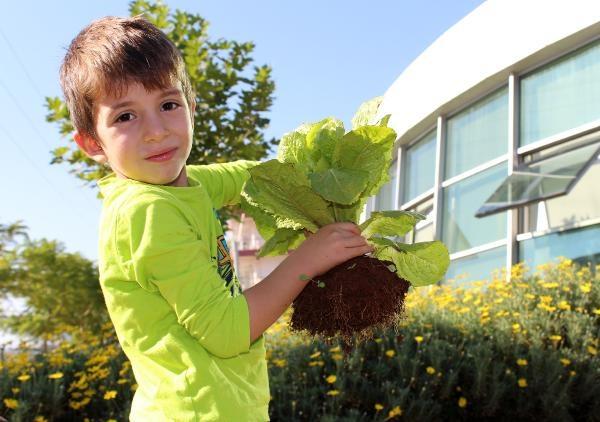 Ekolojik Kreş'te öğrenciler çiftlik hayatını öğreniyor