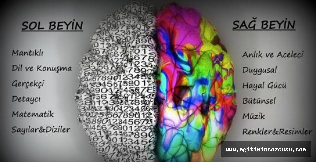 Sağ Beyin Temelli Eğitim okul başarısını etkiliyor