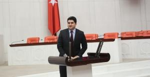 Cumhurbaşkanı Erdoğan'ın Üniversiteli işsizler açıklamasına tepki