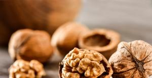Unutkanlığı karşı 10 etkili besin